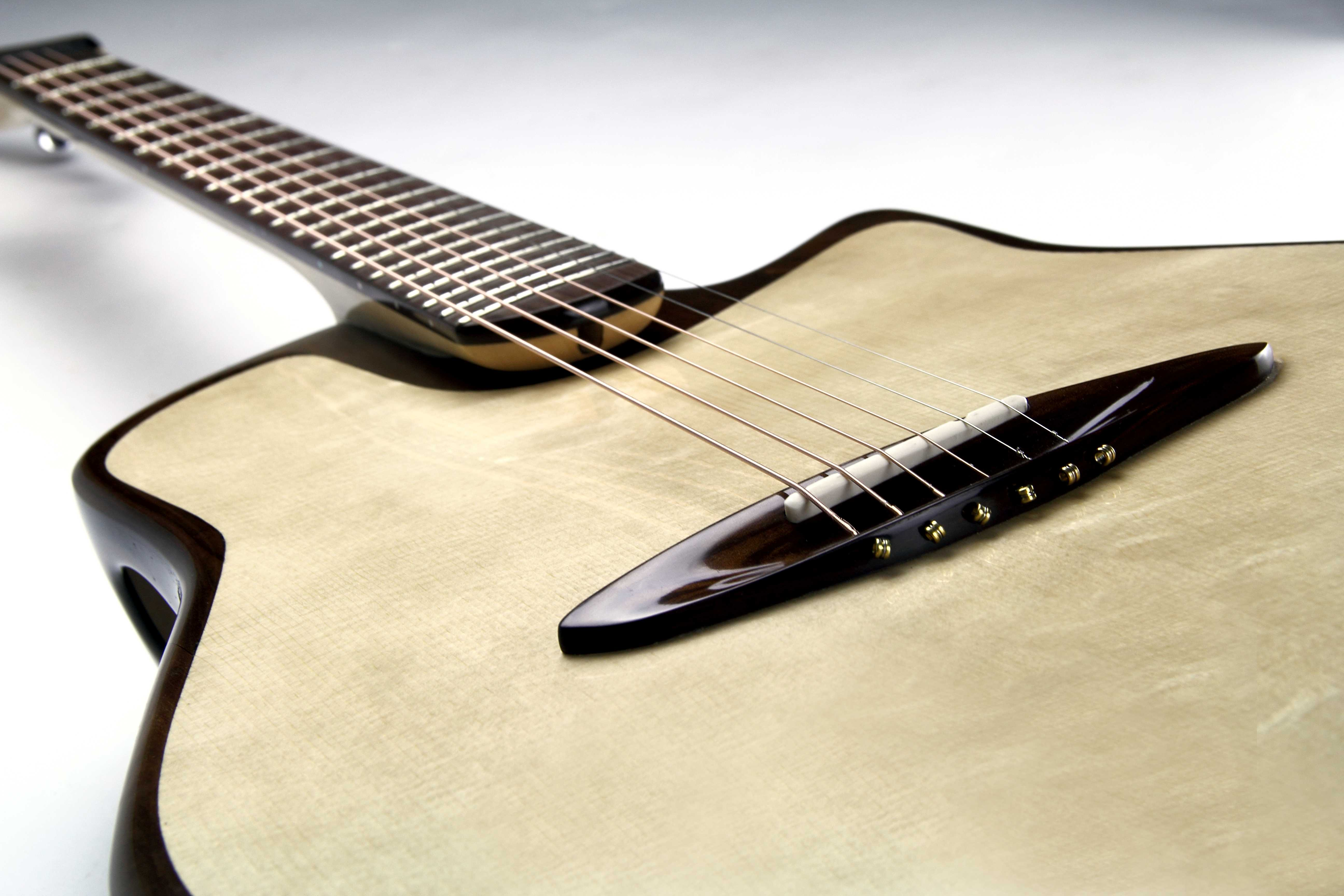 Canna Guitar von Jakob Frank mit Griffbrett, Steg und Kopfplatte aus Sonowood.