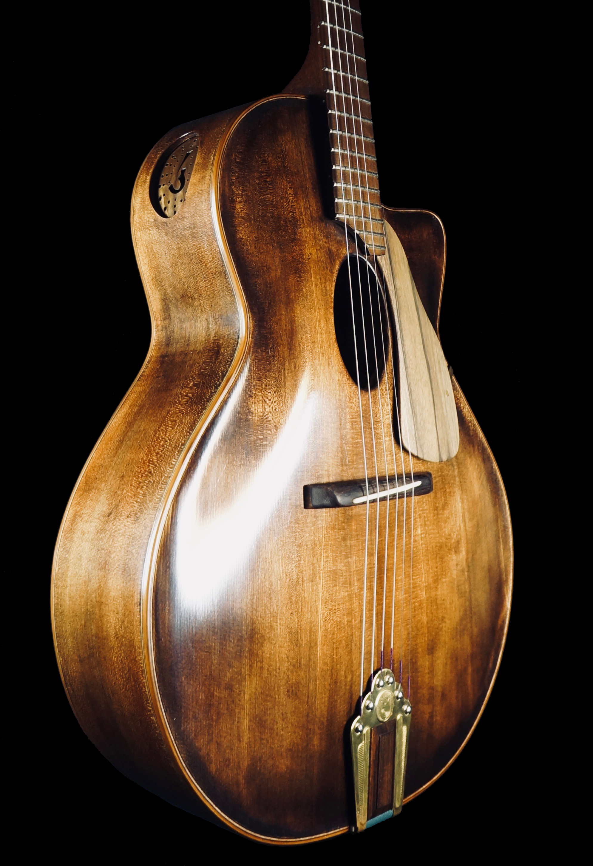 Bodio Guitar with fretboard and bottom from Sonowood walnut